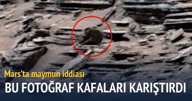 Mars'ta maymun iddiası