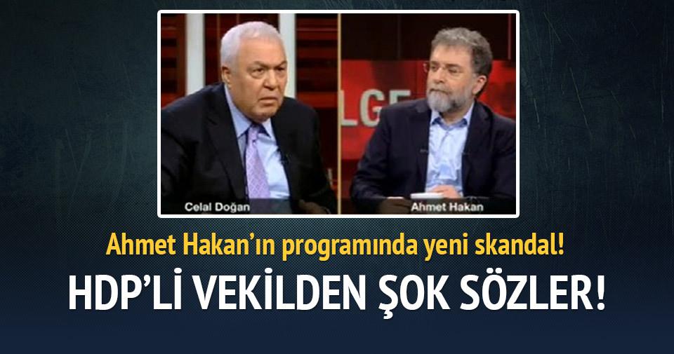 HDP'li vekil teröristlere vatan evladı dedi!