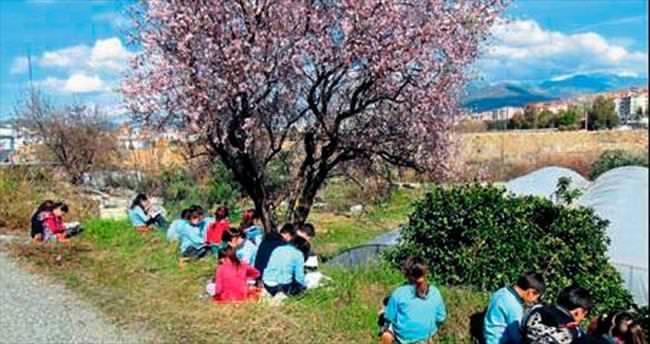 Baharın habercisi bademler çiçek açtı