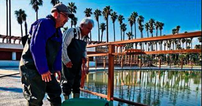 EXPO Göleti suya ve balığa kavuştu