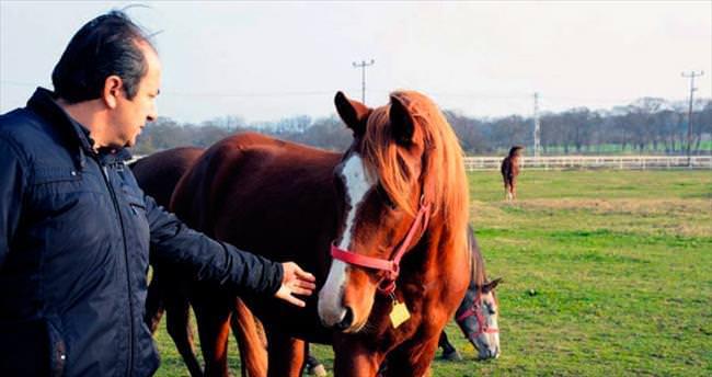 Karacabey'de atlarla bir gün