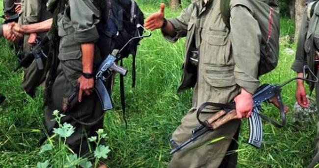 Almanya'da aranan PKK'nın üst düzey yöneticisi tutuklandı