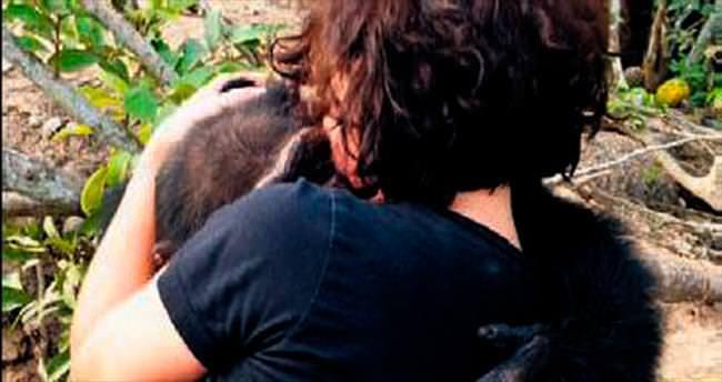 Dünyanın en yalnız şempanzesi: Ponso