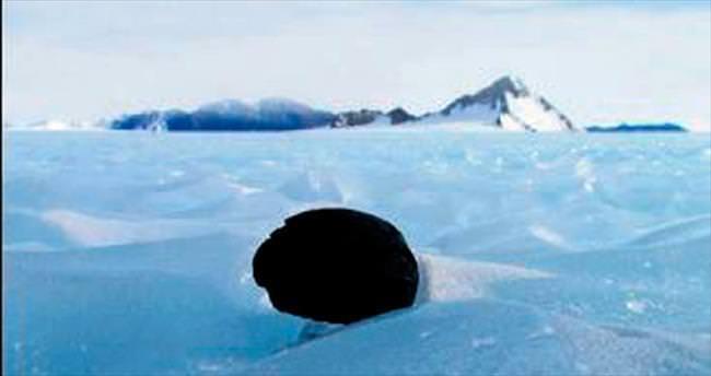 Antarktika'da göktaşı bulundu