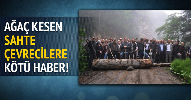 Artvin'de eylem için ağaç kesenler cezalandırılacak!