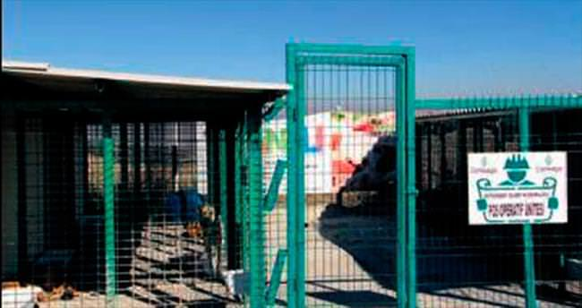 Çayyolu'nda 5 ayda 437 hayvana tedavi