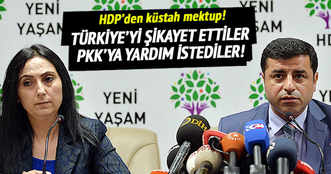 HDP, BM ve AP'ye Türkiye'yi şikayet etti