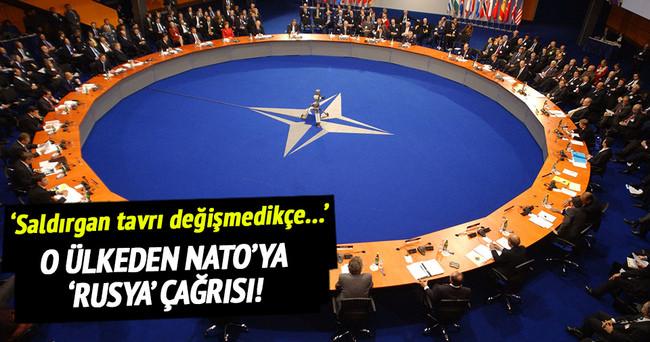 Litvanya'dan NATO'ya 'Rusya' çağrısı