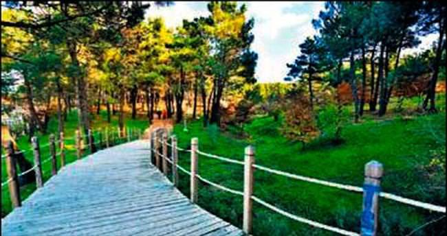 Ümraniye'nin yeşili Avrupa'dan fazla