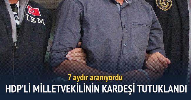 HDP'li milletvekilinin kardeşi terör örgütü üyeliğinden tutuklandı