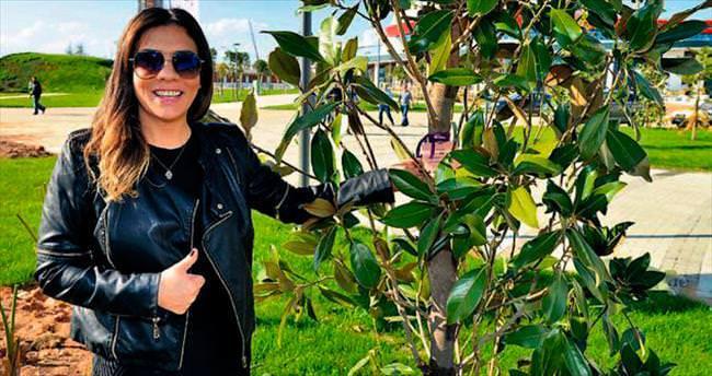 'Üç ayda bir Antalya'ya gidip manolya ağacımı sularım'