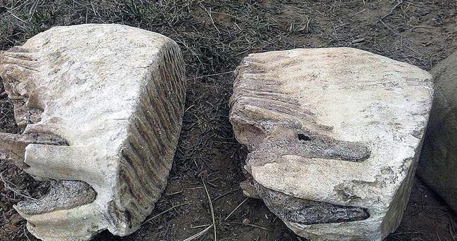 Kırgızistan'da mamut kalıntısı bulundu