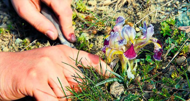 Dört mevsim Türkiye