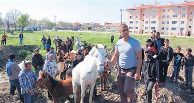 Emniyet atları topladı trafik nefes aldı