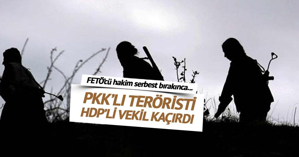 Teröristi affeden hakim FETÖ'cü çıktı