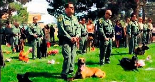 Polis köpeği Nicky törenle uğurlandı
