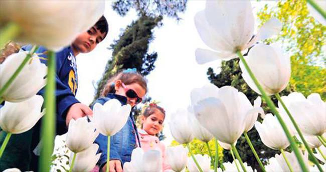 Bursa'da renk cümbüşü başladı