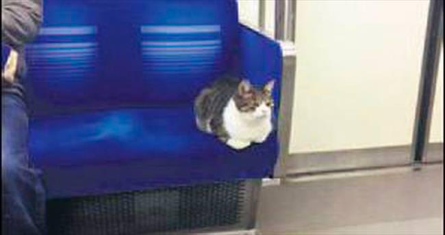 Tokyo metrosunun mudavimi
