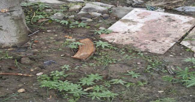 PKK'nın kullandığı evin bahçesinden çıktı!