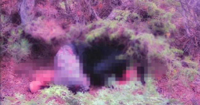 Kayıp kadın ormanda baygın bulundu