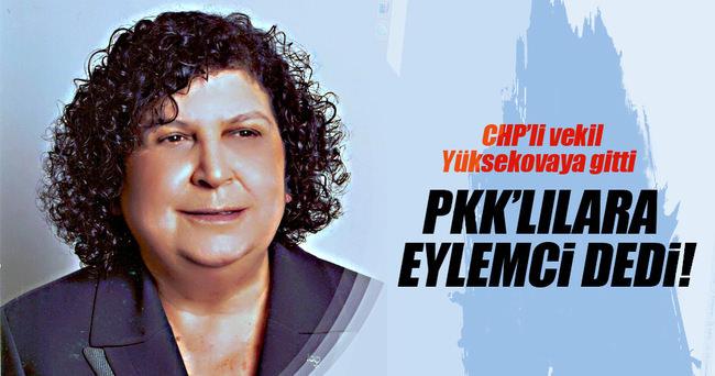 CHP'li vekil PKK'lılara eylemci dedi!