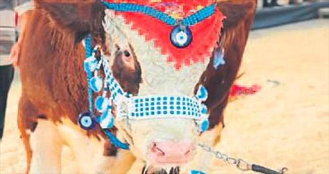 Burdur'da tarım ve hayvancılık fuarı
