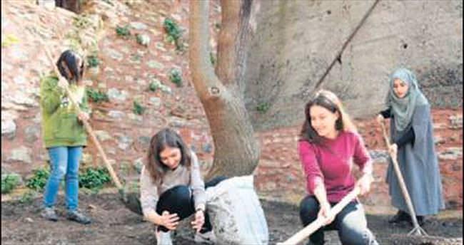 Fakülte bahçesinde organik bostan