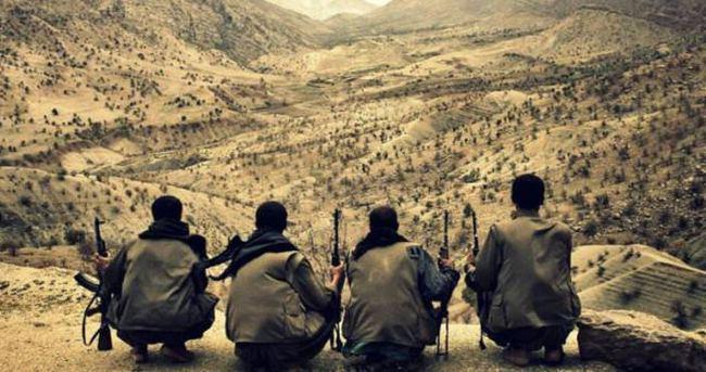 Bingöl'de PKK operasyonu: 2 kişi tutuklandı