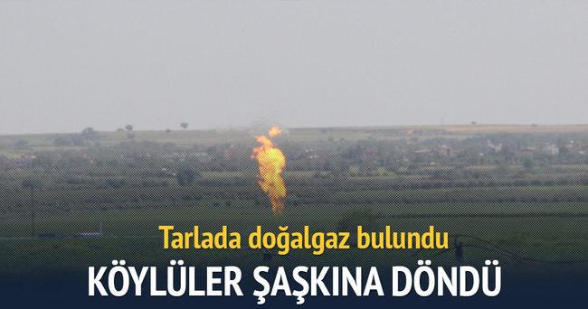 Adana'da tarlada doğalgaz bulundu