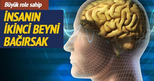 İnsanın ikinci beyni bağırsak