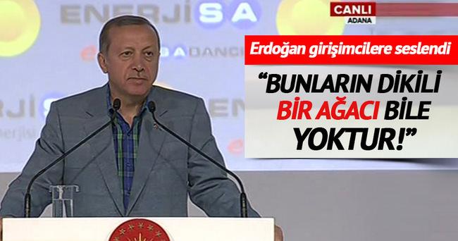 Erdoğan: Yerli kömürü kullanalım cari açığı azaltalım