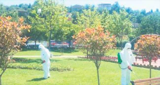 Güngören'de parklar keneye karşı ilaçlandı