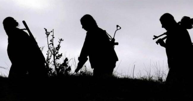 Nusaybin'de 14 Mart'tan bu yana 292 PKK'lı öldürüldü