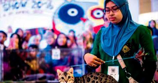 Malezya'da göz kamaştırıcı güzellik