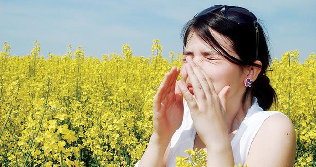 Bahar alerjisi neden olur?