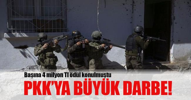 Üst düzey PKK'lı öldürüldü!