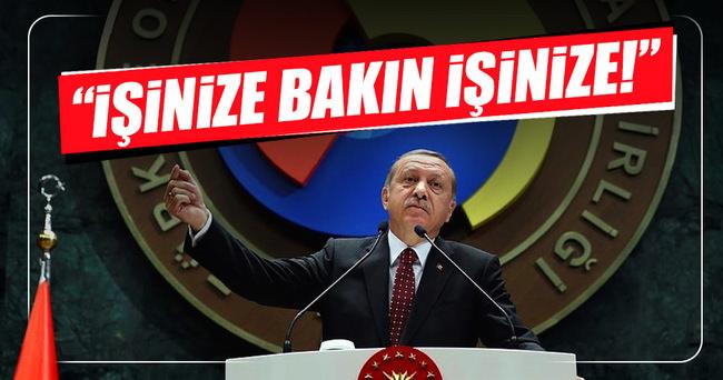 Erdoğan: İşinize bakın işinize!