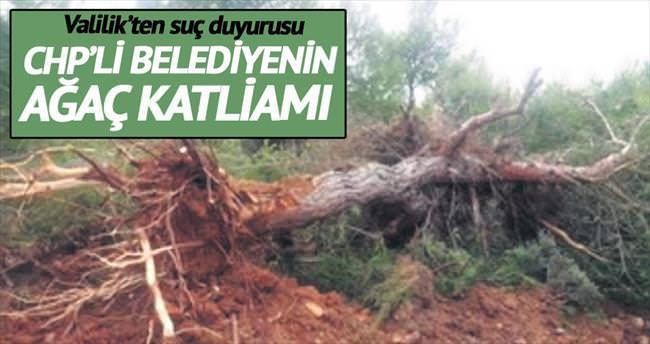 CHP'li belediyeden dozerli ağaç katliamı