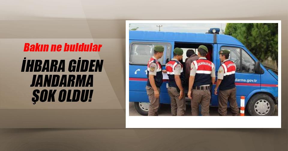 Antalya'da ihbara giden jandarma hazine buldu!