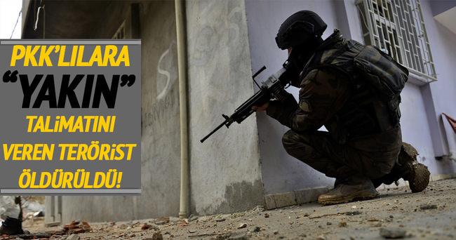 Nusaybin'de terör örgütüne büyük darbe