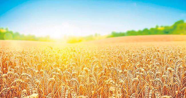Kalyon Tarım sektöre yeni markalar sunuyor