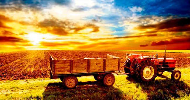 Açlık, tarımı dinamo yaptı