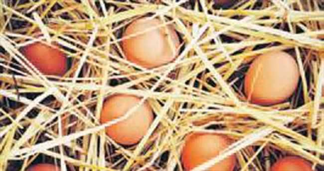 Yumurtayı çamura bulayıp organik diye satıyorlar