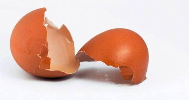 Yumurta kabuğuyla yara tedavisi