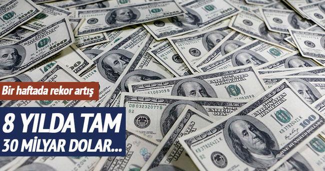 Merkez Bankası'nın döviz rezervi 100 milyar doları aştı