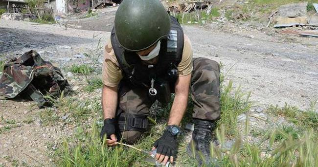 Şırnak'ta bir günde 80 patlayıcı imha edildi