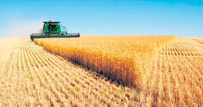 Tarımda büyük atılım: Çiftçi çipli üretime geçti
