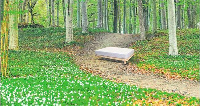 İsveç uyku sanatı Halsa İzmir'e geliyor