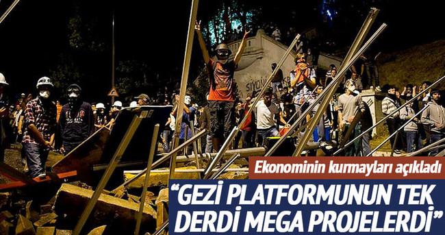 Gezi platformunun tek derdi mega projelerdi