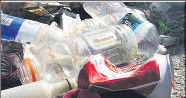 Genç balıklar plastik bağımlısı